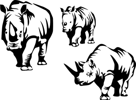 rhinoceros family Vector