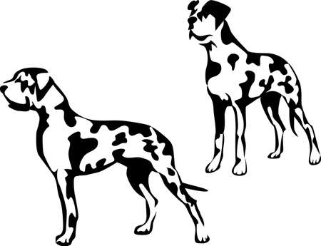 great dane - harlequin Stock Vector - 17271642