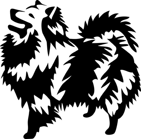 dog - german spitz Stock Vector - 17271623