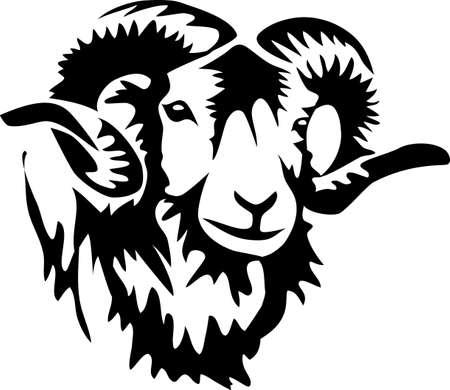 carnero: cabeza de carnero Vectores
