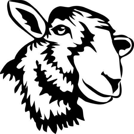hoofd van schapen Stock Illustratie