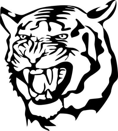 aggressive: angry tiger Illustration