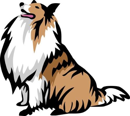 zitten collie hond Stock Illustratie