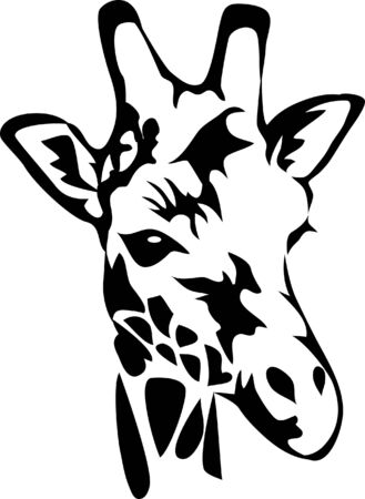 wildlife: head of giraffe Illustration