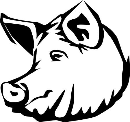 hoofd van het varken Stock Illustratie
