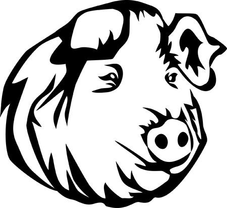 pigsty: pig logo Illustration