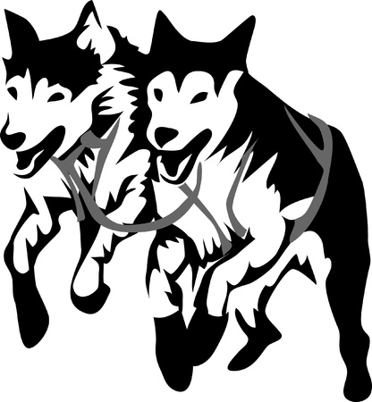 sled dogs running Vector