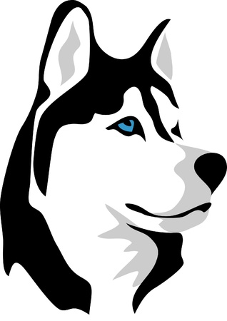 dog sled: head of malamute