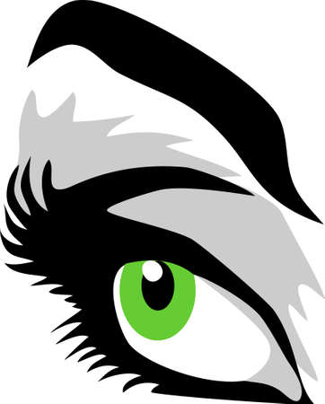 eye with eyebrow Vector