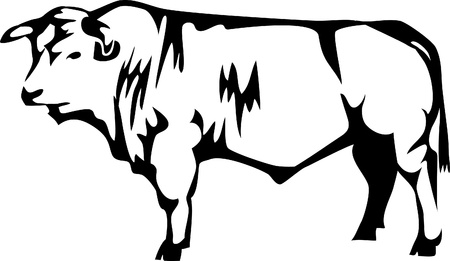 beef breed of cattle Vector