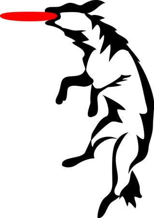 dog bite: cane che salta per giocattolo di plastica a forma di disco