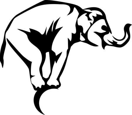 ludicrous: circus elephant Illustration