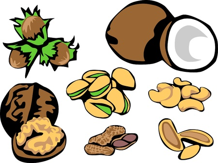 cashews: nuts - hazelnuts, coconuts, walnuts, pistchios, cashews, peanuts, pinia nuts