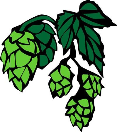 hop hops: hop branch