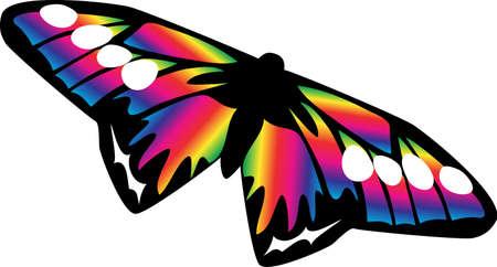 iridescent: iridescent butterfly