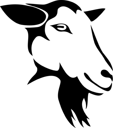 head of hornless goat Vector