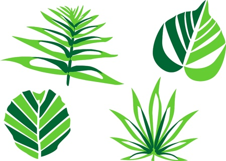 stylized leaves Stock Vector - 19424776