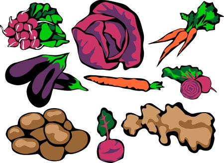 red cabbage: vegetables
