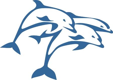 Dolphin: ba con cá heo nhảy
