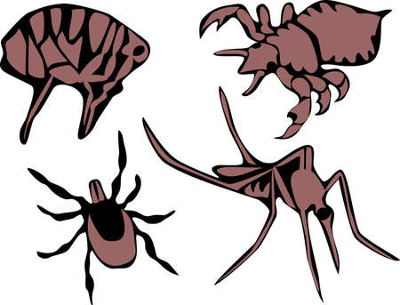 insect repellent: flea, tick,  louse and mosquito Illustration