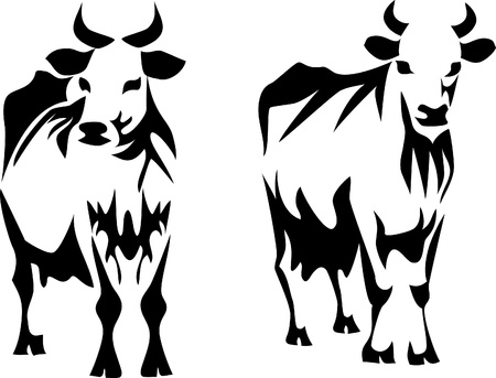 melkkoeien Stock Illustratie