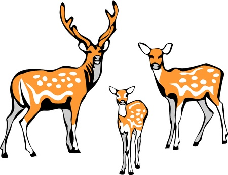 familia de los ciervos sika Ilustración de vector