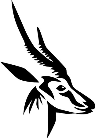 wildlife: head of horned antelope Illustration