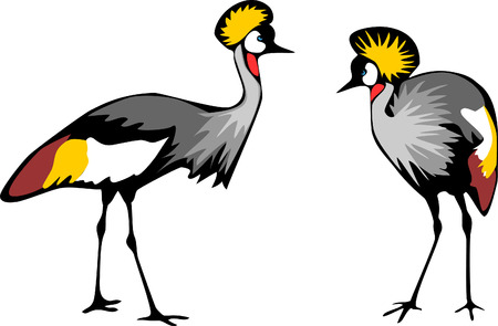 african grey: crowned crane Illustration