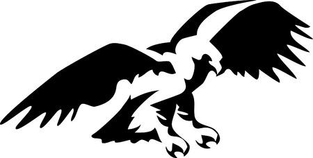 eagle flying: stylized flying eagle Illustration