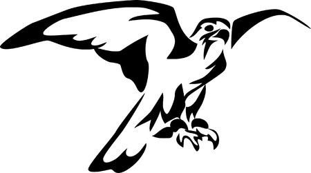cetreria: estilizada falcon Vectores