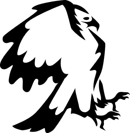 halcones: atacar águila