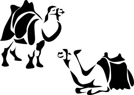 hump: camel with saddle Illustration