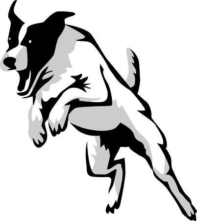 springen hond