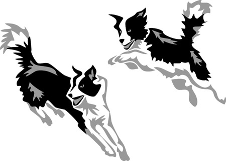 stylized jumping border collie