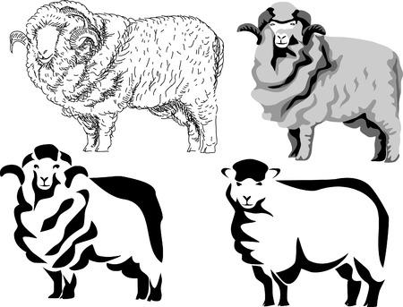 merino schapen Stock Illustratie
