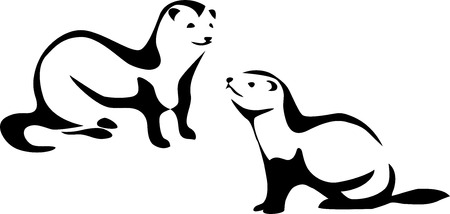 mink: stylized ferret