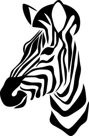 safari animal: head of zebra