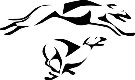 chart: greyhound dog racing