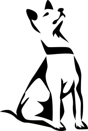 obediencia: perro sentado