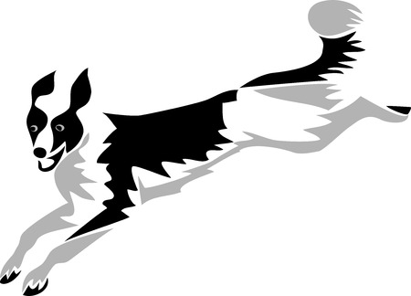 border collie: Jumping Dog Illustration