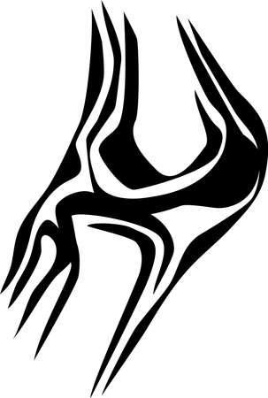 fibula: human knee joint
