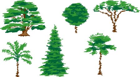 forest wood: trees - vector illustration