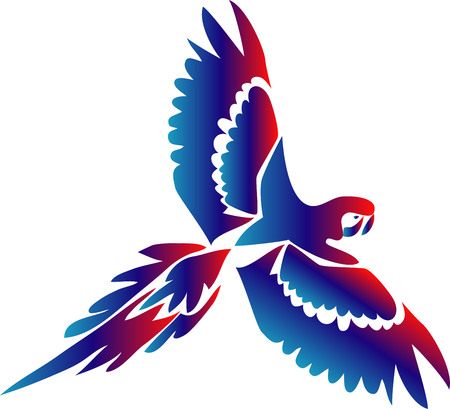 macaw: flying macaw Illustration