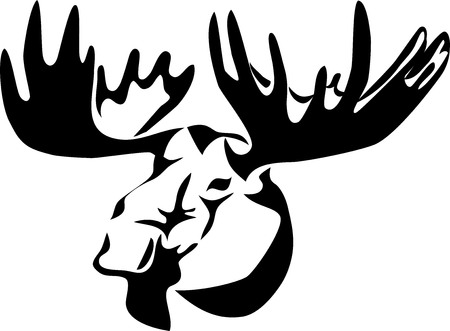 moose antlers: head of moose