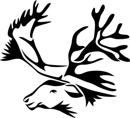 tundra: reindeer head
