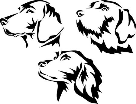Testa di cane puntatore Vettoriali