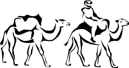 Cameleer Illustration