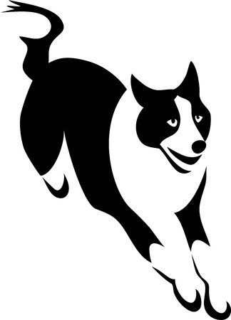 leaping: Border collie - stylized illustration
