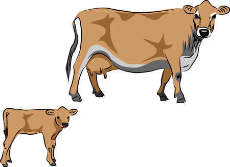 Jersey cow with calf vector illustration