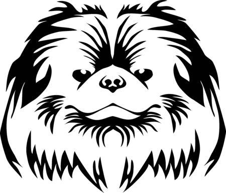 Pekingese head Illustration